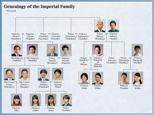 genealogy-e
